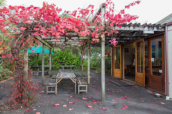 Cellar Door courtyard in Autumn colours